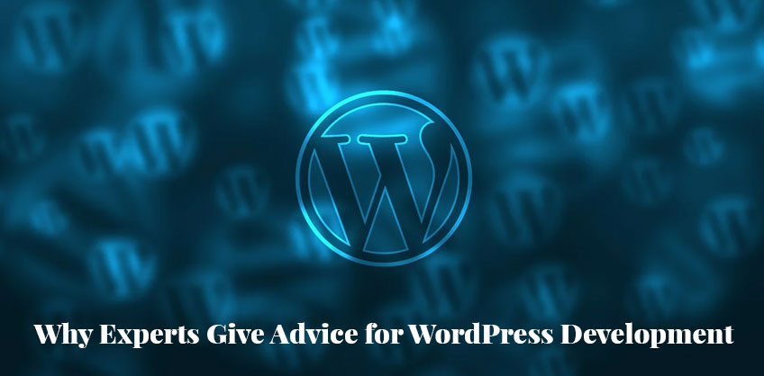 Why Experts Give Advice for WordPress Development