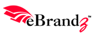 eBrandz Solutions Pvt. Ltd. Top Rated Company on 10Hostings