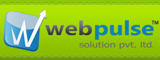 Webpulse Solution Pvt. Ltd. Top Rated Company on 10Hostings