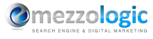 MezzoLogic, LLC Top Rated Company on 10Hostings