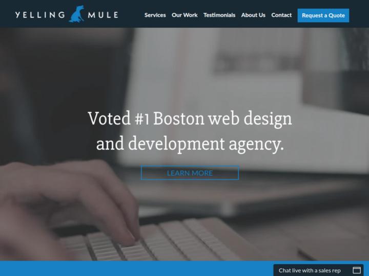 Yelling Mule, LLC on 10Hostings