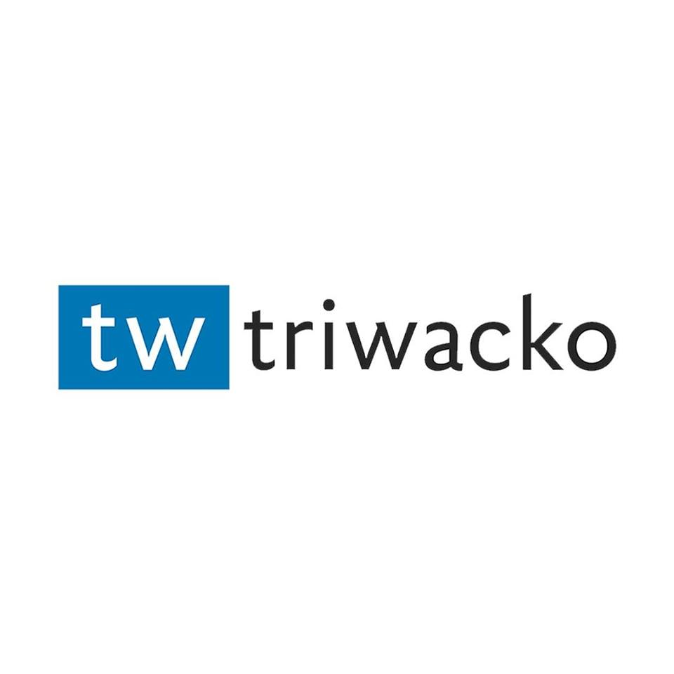 Triwacko IT Solutions Top Rated Company on 10Hostings
