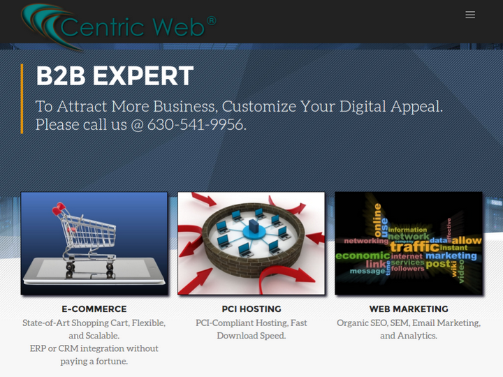 Centric Web on 10Hostings