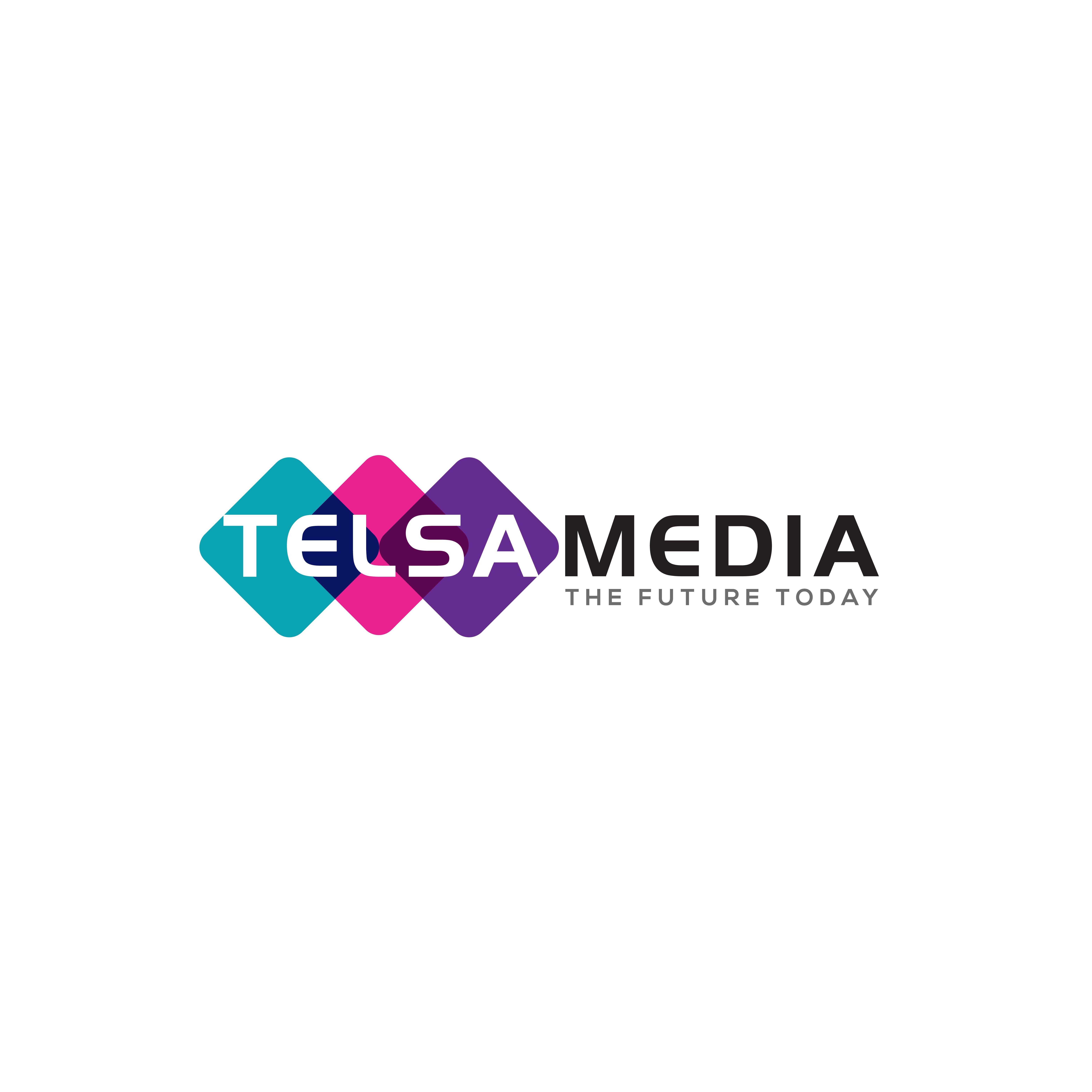 Telsa Media Ltd Top Rated Company on 10Hostings