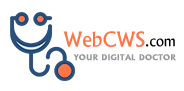 WebCWS Top Rated Company on 10Hostings