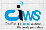 Creative IT Web Solution on 10Hostings