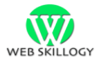 Web Skillogy Top Rated Company on 10Hostings