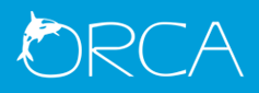 Orca Web Technologies Pvt Ltd Top Rated Company on 10Hostings