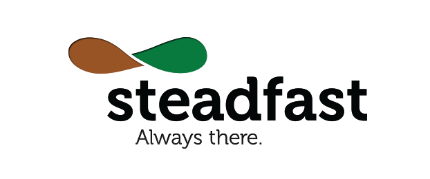 Steadfast Top Rated Company on 10Hostings