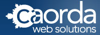 Caorda Web Solutions Top Rated Company on 10Hostings