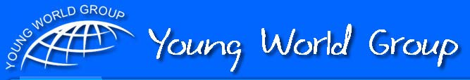 Young World Group Top Rated Company on 10Hostings